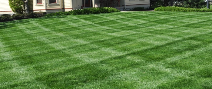 how to make your backyard look good 28 images how to