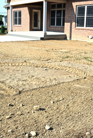 "Typcial lawn before ""rock hounding"" process to remove rocks and debris."